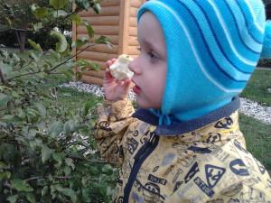 осень, дети, яблоки