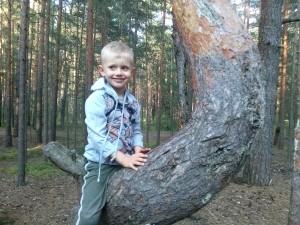 ребёнок на дереве