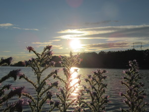 фото природы, закат фото, отражение солнца в воде, солнечная дорожка на воде, отдых на природе, красивые фото реки,